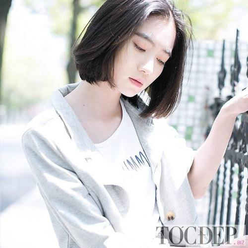 toc-bob-ngan-23